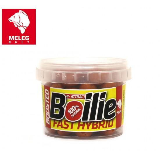 Meleg Bait Boosted Boili